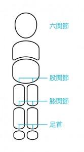 六関節とは左右の股関節、膝、足首のことです